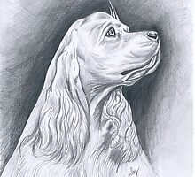 COCKER SPANIEL by David Lumley