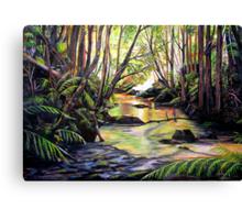 Blue Mountains Creek Canvas Print