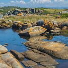 Pool Among the Rocks. by Bette Devine