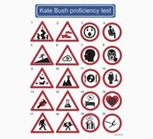 Kate Bush Proficiency Test by GaffaUK