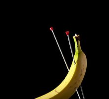 I Hate Fruit - Banana by Alan Organ