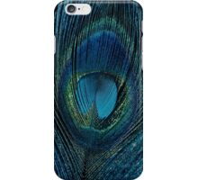 Captivate iPhone Case/Skin