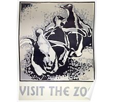 Visit the Zoo, Penguins Poster