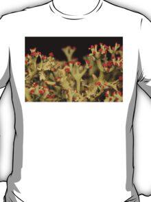 Cladonia Lichen T-Shirt