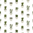 Cacti & Succulents (White) by Vicky Webb
