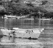 The Boat by Marino Holguin