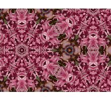Kaleidoscopic Garden 19 Photographic Print