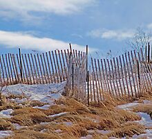Last Remnants of Winter on the Beach by Gilda Axelrod