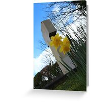 Death and Daffodils Greeting Card