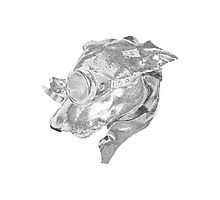 Steampunk Dog Photographic Print