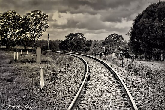 Down the Track by wallarooimages