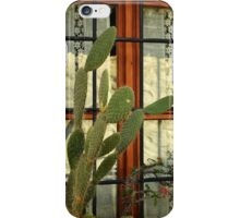 bodrum window iPhone Case/Skin