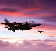 Jaguar Sunrise by J Biggadike