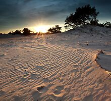 Sunset over dunes by Olha Rohulya