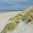Dunes, beach and sea in Zeeland, Netherlands by 7horses