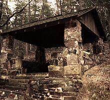 Mountain Shelter in Hot Springs Arkansas by Emily Rose