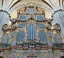 The New Cathedral Organ, Salamanca, Spain by Trish Meyer