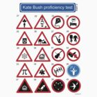 Kate Bush Proficiency Test (Part II) by GaffaUK