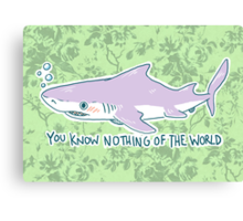 You Know Nothing of the World Canvas Print