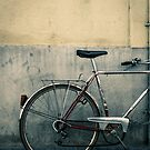 Antique Bicycle  by DavidCucalon