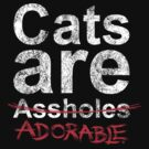 Cats are.... by CarolinaMatthes