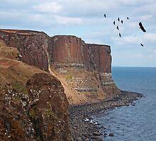 Kilt Rock, Skye, Scotland by Sandy Sutherland