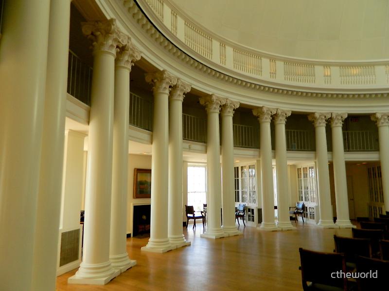 Inside the Rotunda-Columns    ^ by ctheworld