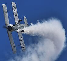Bücker Bü 133 Jungmeister Smokin !! - Shoreham - 2013 by Colin J Williams Photography