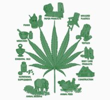 Benefits Of Weed by pristinepeople