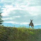 fleeing deer by Nordic-Photo