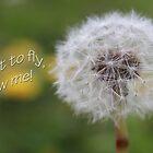 Blow me! by Dulcina