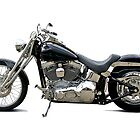 2003 H.D. Softail Custom 14 by DaveKoontz