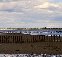 East Mersea Beach  by Nigel Bangert