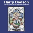 Harry Dodson top by dotmund