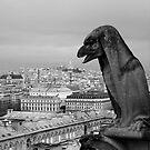 Paris by tonni