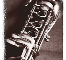Old Clarinet by Ron Fowler