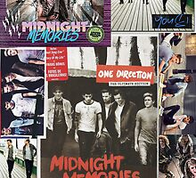 1D Album Art by sdunaway