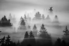 Ghosts by Nordic-Photo