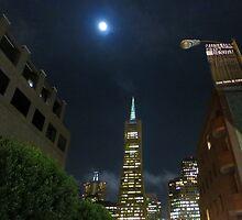 Transamerica Building by David Denny