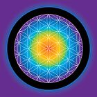 Flower of Life • 2014 by Robyn Scafone