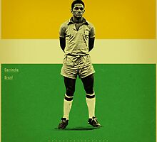 Garrincha by homework