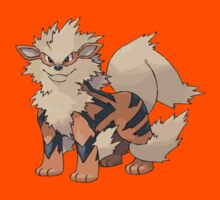 Arcanine [Perfect Quality Vector Image] by RWHTL