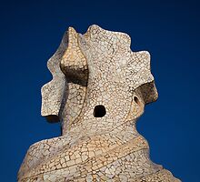 Gaudi Rooftop by Maciej Nadstazik