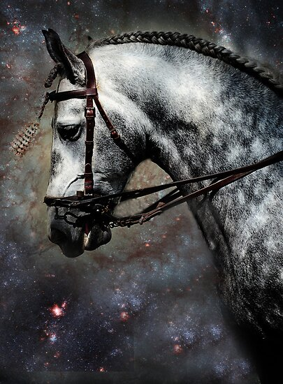 The Horse Among the Stars by JennyRainbow