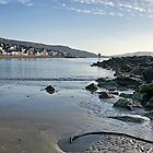 Lyme Regis Seascape by Susie Peek