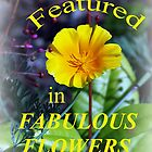 FabFlowers by nastruck