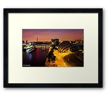 Beautiful Armadillo at night! Framed Print