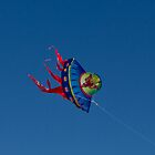 GO fly a kite by KSKphotography