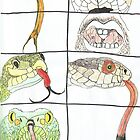 Snakes design by ycrystal