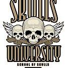Skulls University 3 by Adamzworld